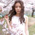 meisakura_sub_120px_22