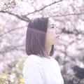 miyakoshimamura_sub_120px_29